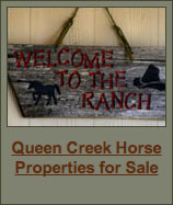 Queen Creek Horse Properties for Sale