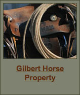 Gilbert Horse Property